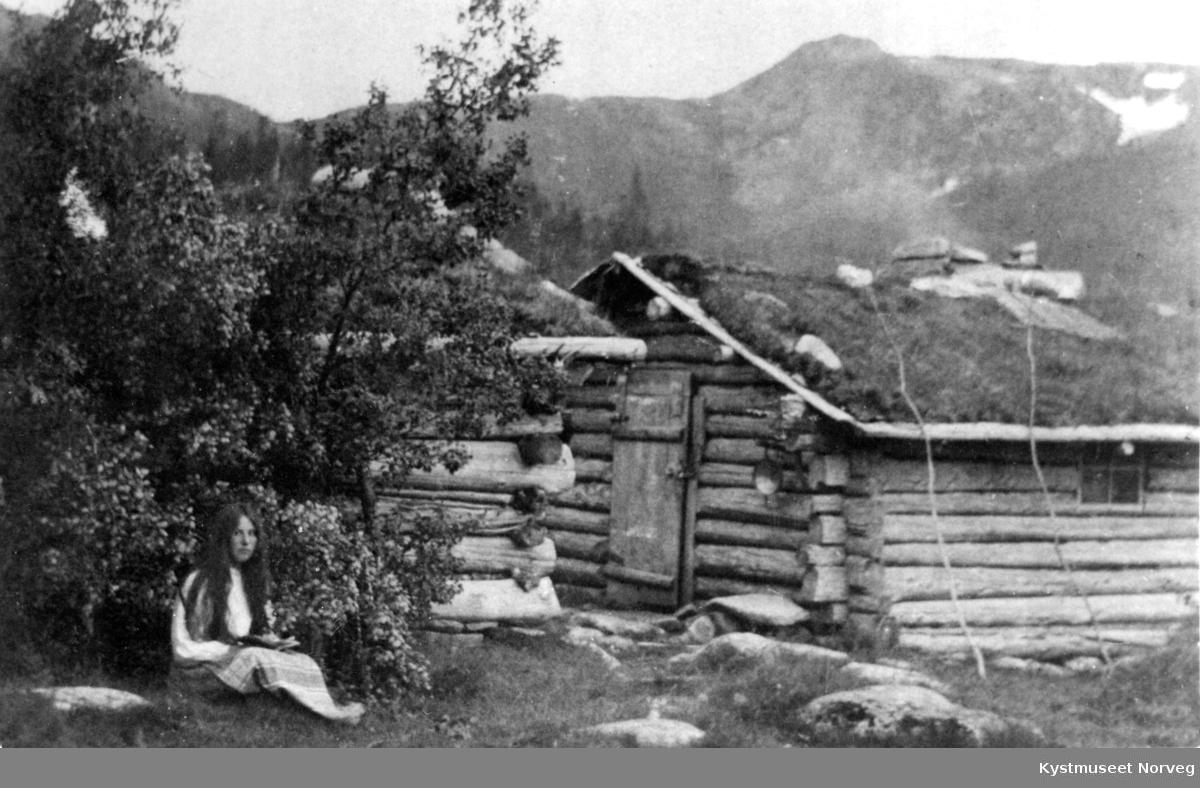 Tømrede hus på Nordsætra på Flatanger