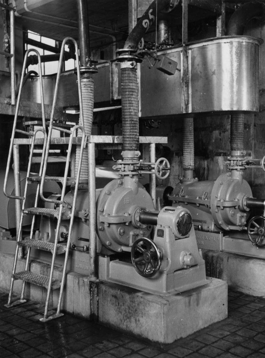 PM 12 Refiner på Papyrus, okt. 1951.