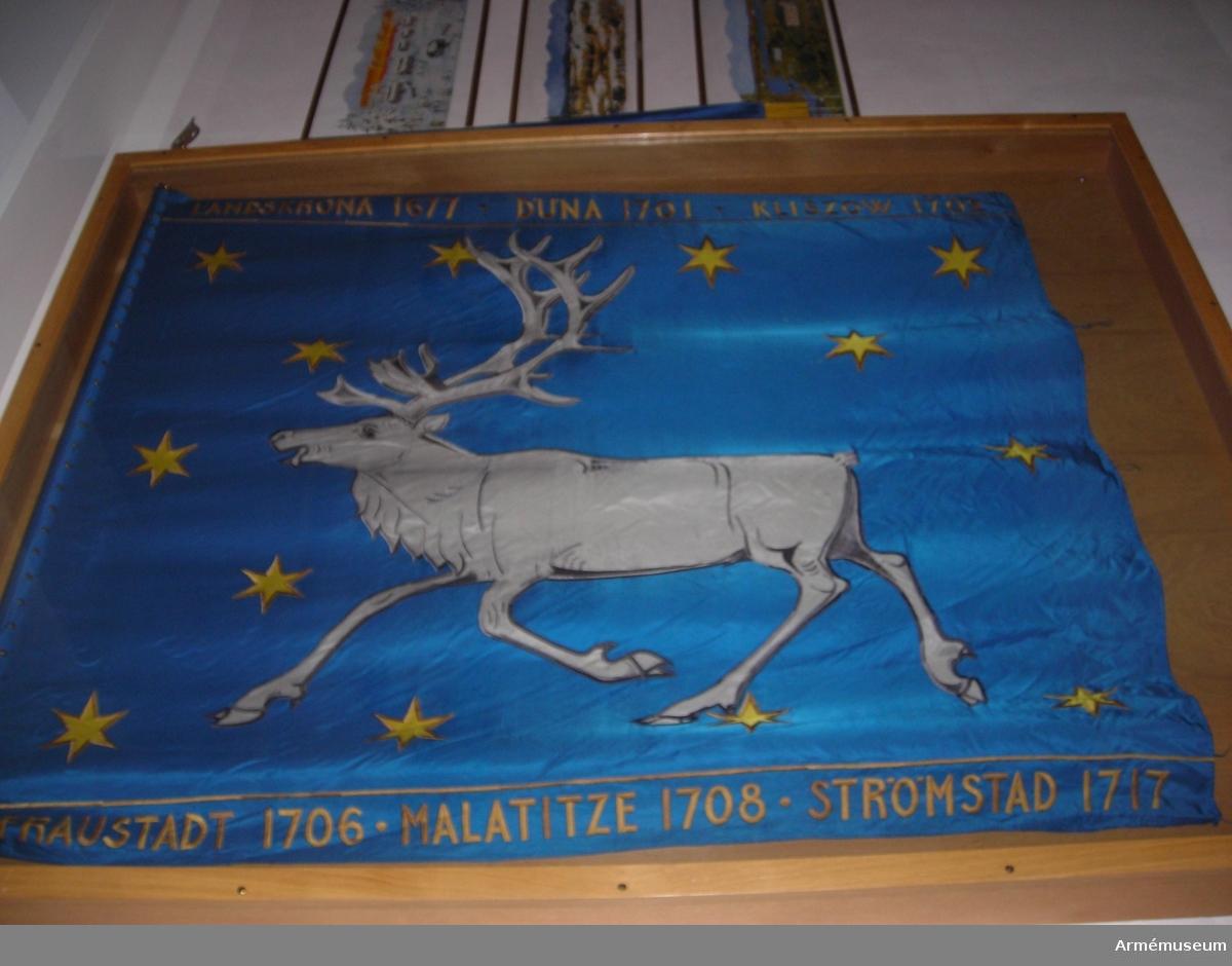 På blå duk landskapet Västerbottens vapenbild: en springande vit ren åtföljd av sexton sexuddiga gula stjärnor. I övre och undre långsidan bårder med regementets segernamn.