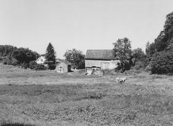 Gården på Djupvik der tunet til den gamle Djupvik- gården lå