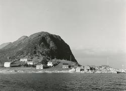 Prospektfotografi av bebyggelsen på Valkvæ, Godøy. Tatt fra