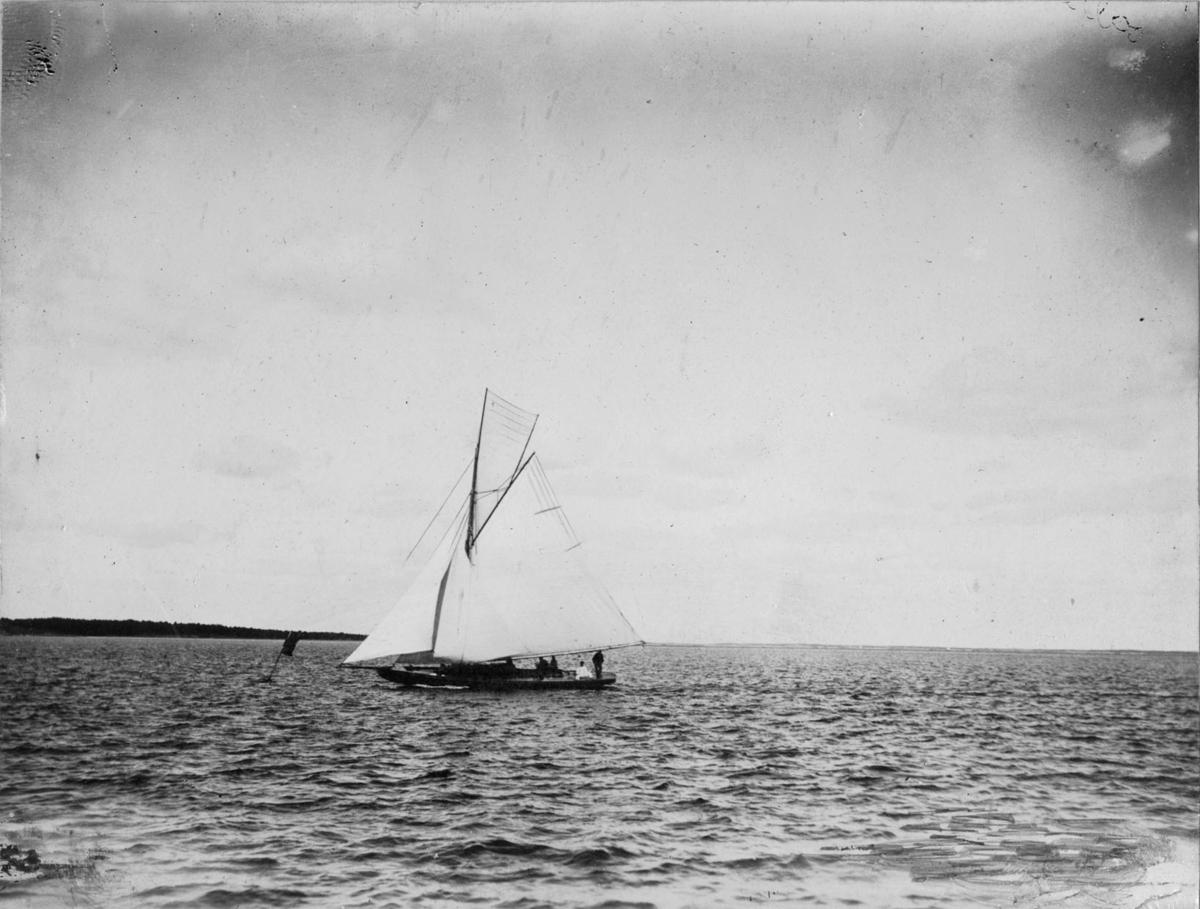 Övrigt: Huruvida bilden visar BLENDA (b. 1896, konstr. Charles Sibbick), som framkastas i anteckningen på monteringsbasen, har inte kunnat bekräftas.