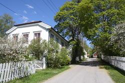 Hus og hager i Storgata, Øvrebyen, i vårblomstring (Foto/Photo)