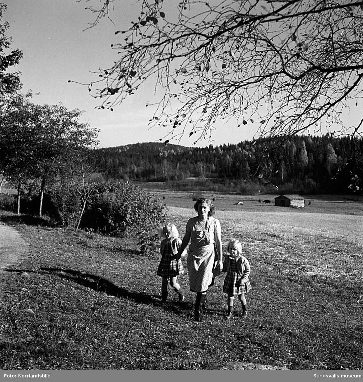 Familj i Attmar, bor mitt i Sverige. Reportagebilder.