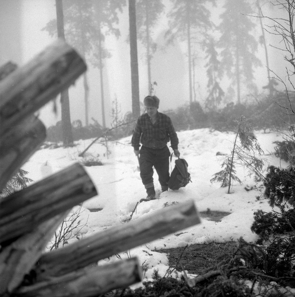 Skogshuggarlägger i Garphyttan. Bildsidan.5 februari 1955