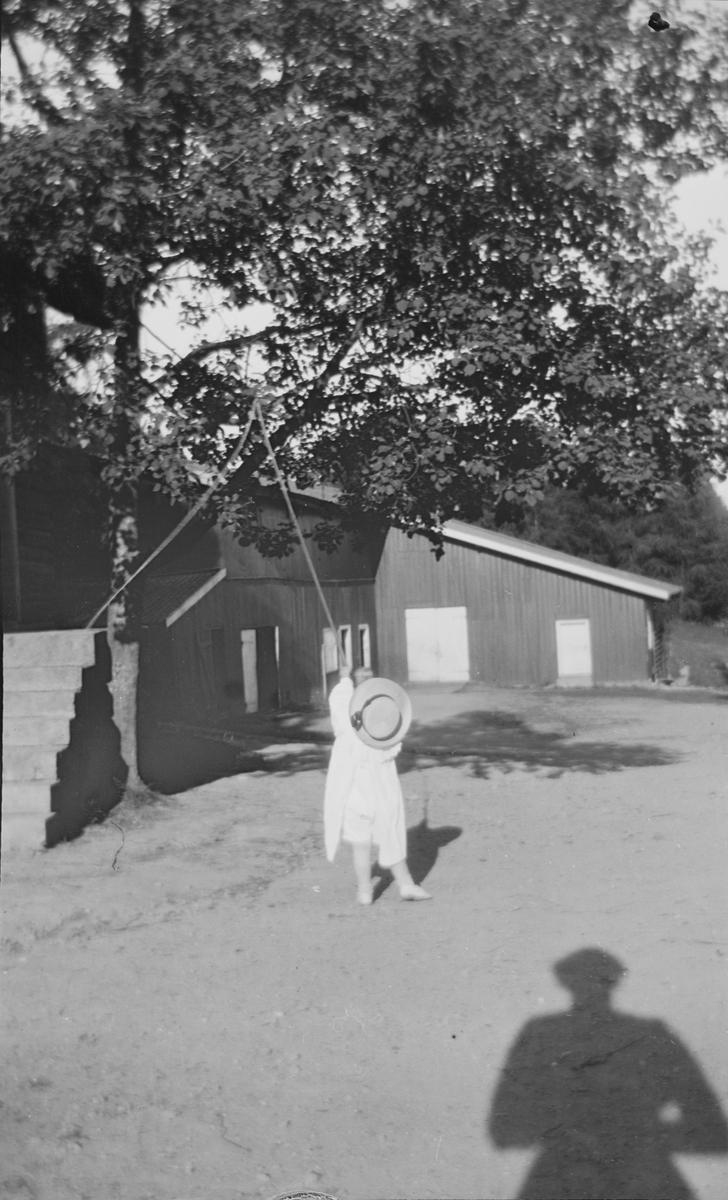Iacob Ihlen Mathiesen står med ryggen til og drar i et tau som henger over en gren i et tre. Et tun med uthus i bakgrunnen.