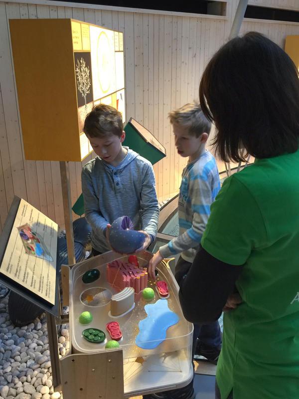 """Elever fra Frydelund skole vises rundt i utstillingen """"Det fantastiske treet"""". (Foto/Photo)"""