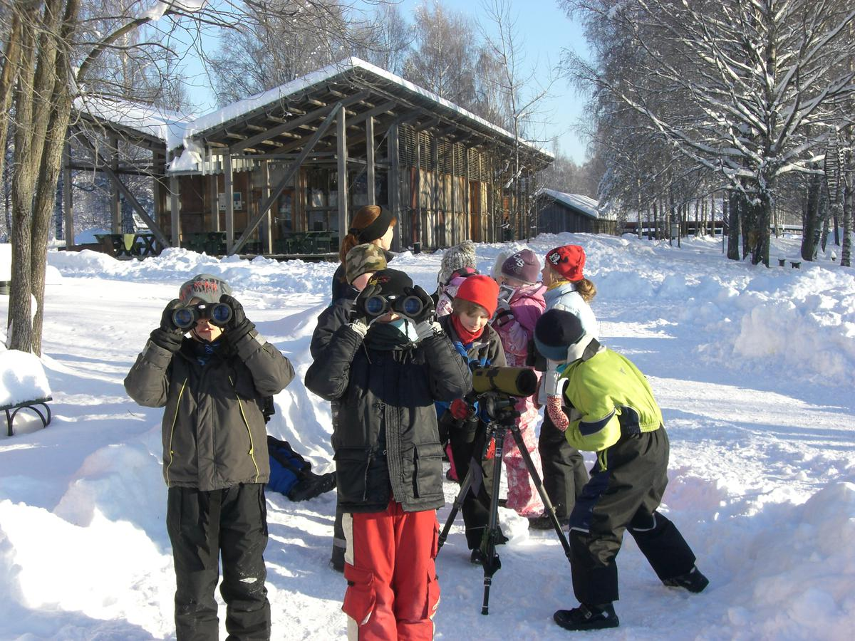 Foto av barn som ser etter fugl i kikkert (Foto/Photo)