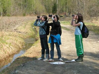 Foto av jenter som ser etter fugl med kikkert