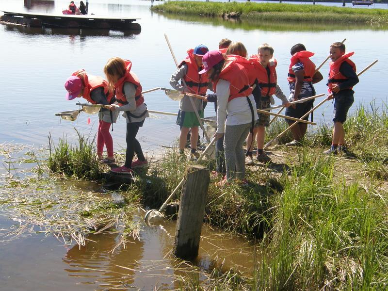 Foto av skoleelever som prøver å fange insekter i vann (Foto/Photo)