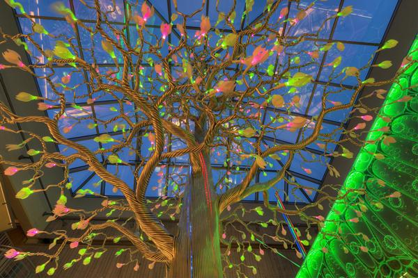 Det fantastiske treet. 16/12 2015. Foto/Photo
