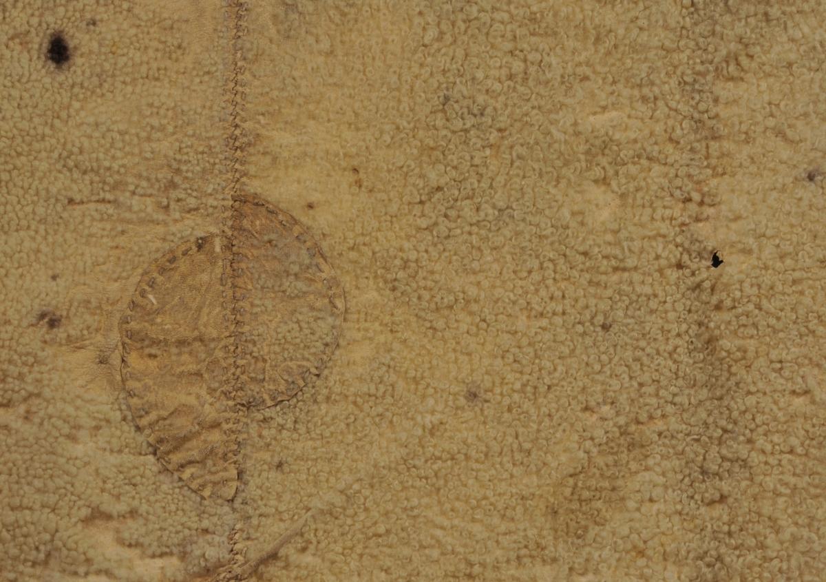 Skinnfell som er sett saman av seks kvite rektangulære saueskinn. Påsydd skinnlappar frå ullsida der skinna ikkje strekk til. Blokktrykk på kjøtsida av fellen. Rundt fellen er det kanta med skinnremser, desse er sydd på med kastesting. Innskøytane er sydd på med tråklesting frå ullsida.