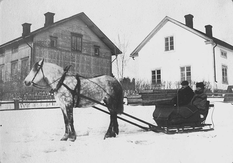 Häst späng för släde med två personer i. Bostadshus.