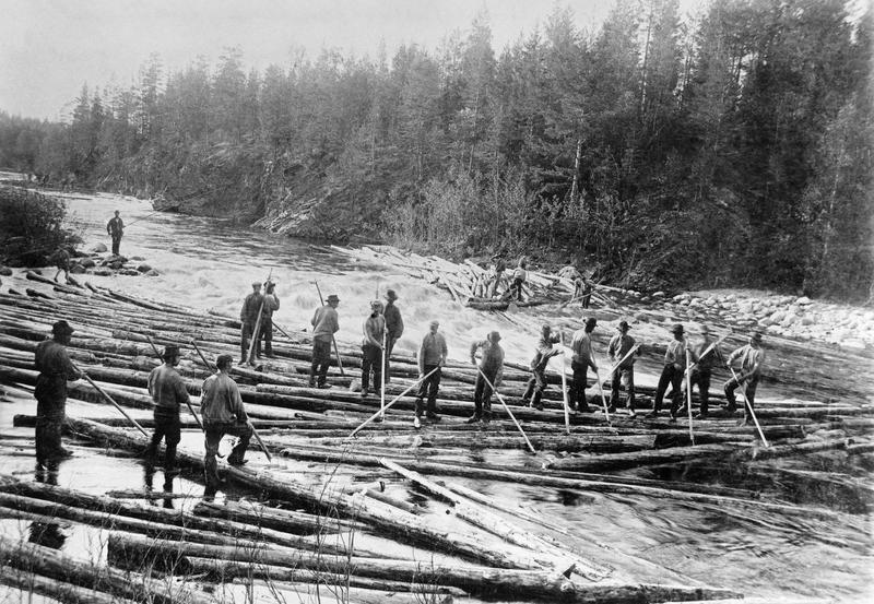 Fløting i Åsta, Åmot, ca 1900. (Foto/Photo)
