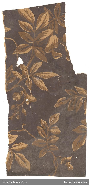 KLM 44052:1 Tapet i papper. Mörkbrun bakgrund med slingrande kvistar och blad i brunt och beige.