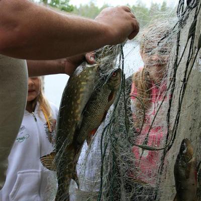 Det er stor sjanse for å få fisk i elva ved Blokkodden.