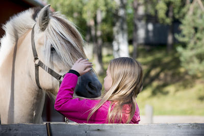 Close-up of girl greeting horse