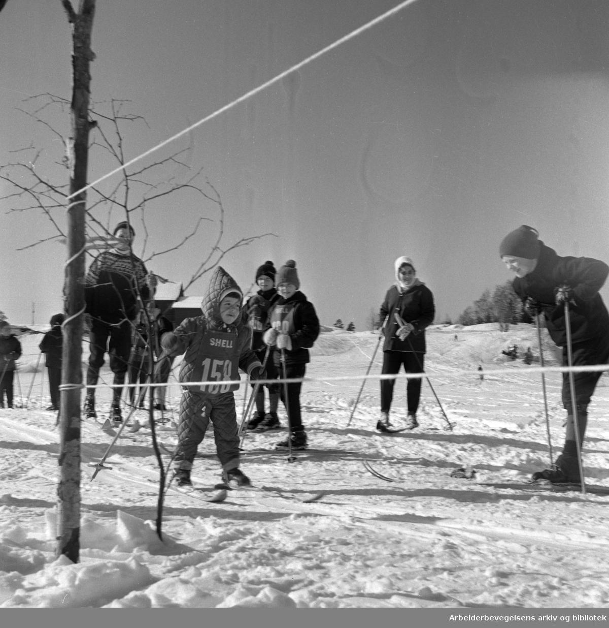 Barneskirenn. 1960-tallet..Nordmarka.