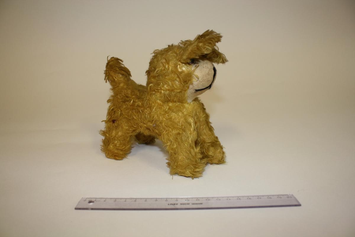 """Eier: Lisbeth Andreassen Chumak Denne hunden var opprinnelig offwhite da den var ny på 1950-tallet, Den bærer navnet """"Knekkinøtt""""."""