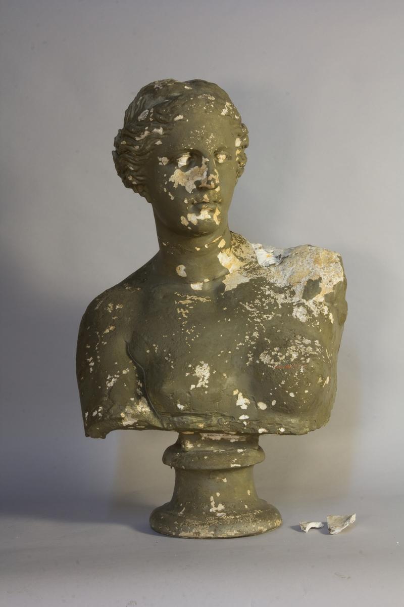 Byst föreställande en ung kvinna med uppsatt hår, Venus från Milo.