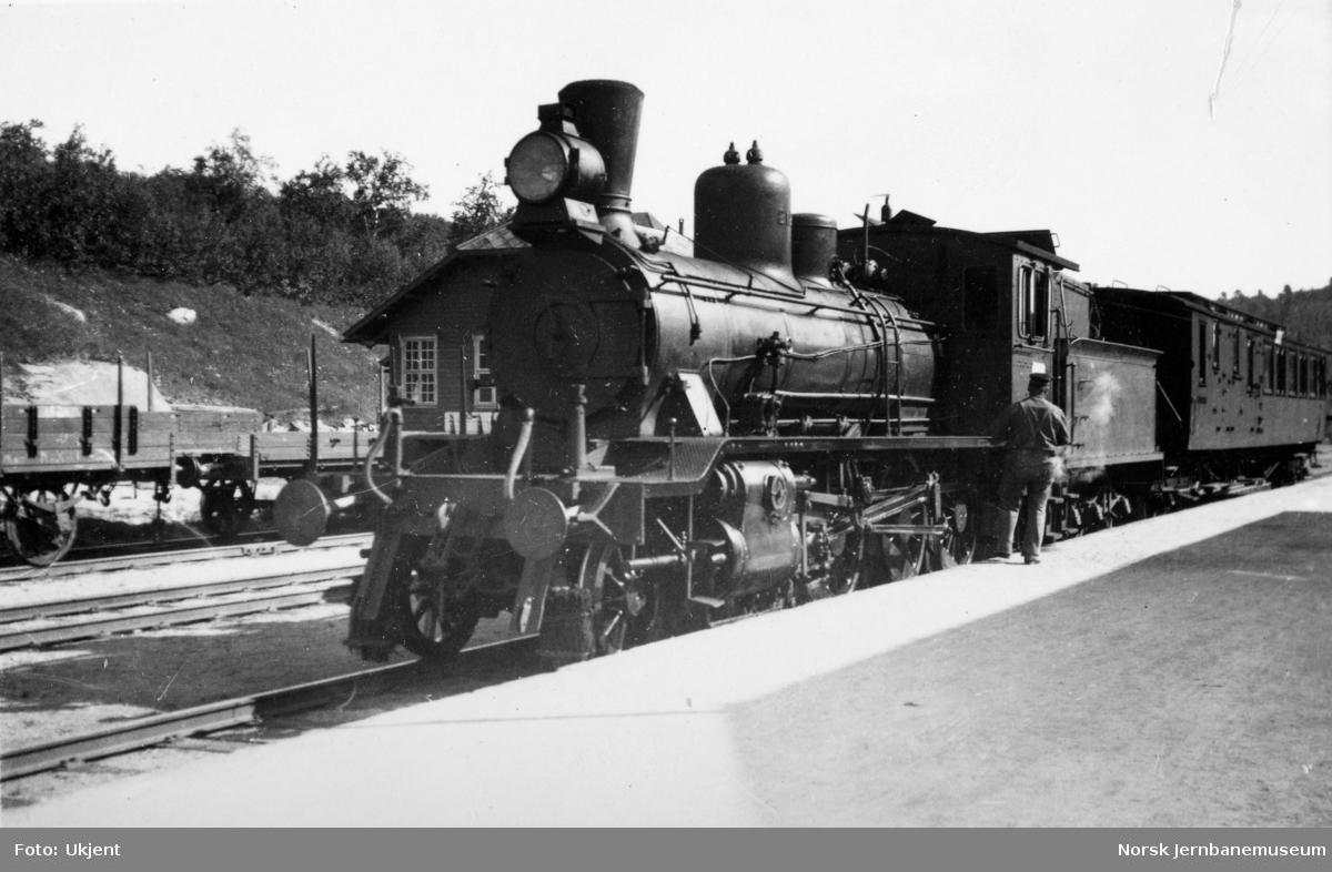 Damplokomotiv type 18c nr. 212 med tog på Geilo stasjon