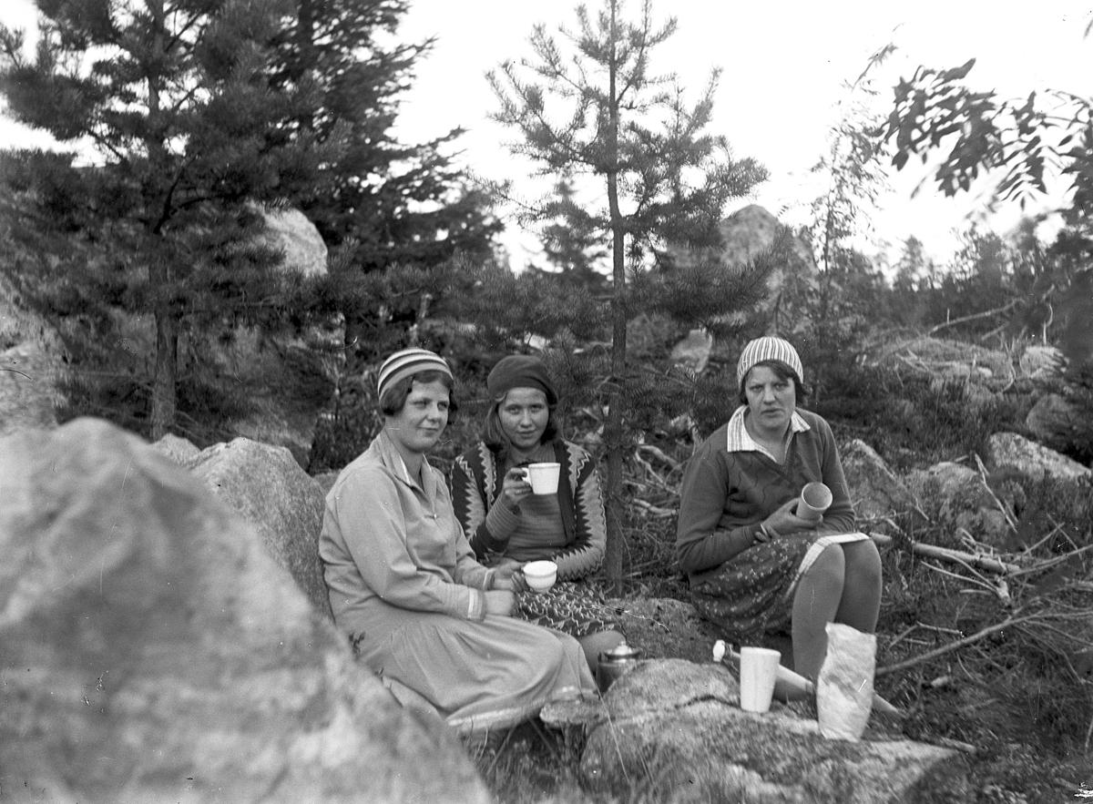 Fikarast i skogen. Från vänster Tora Johansson, Hallen.
