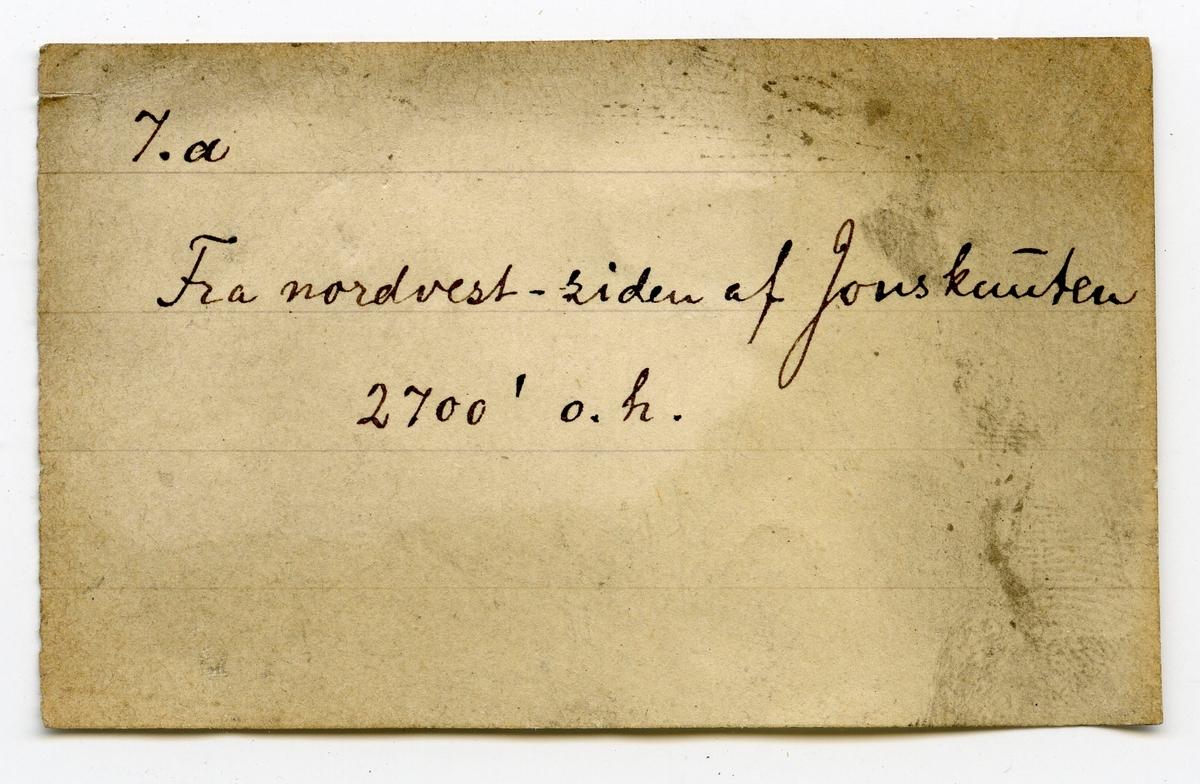 Etikett på prøve: 7.a  Etikett i eske: 7.a Fra nordvest-siden af Jonsknuten 2700' o. h.
