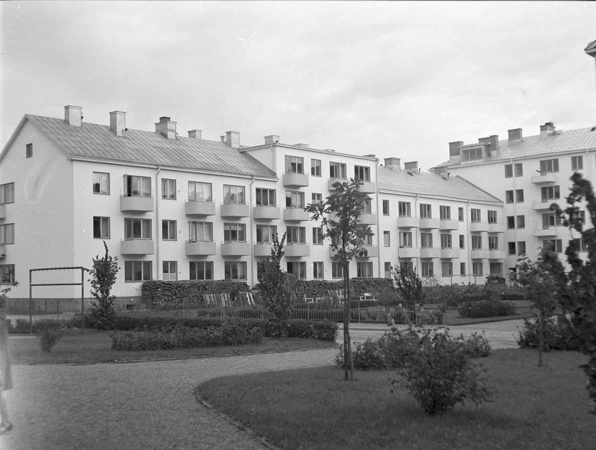 Nybyggen  September 1943