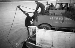 Vid en dramatisk och tragisk olycka på Alnöfärjan vid Fillan