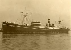 D/S 'Rena' (b. 1911, William Doxford & Sons, Ltd., Sunderlan