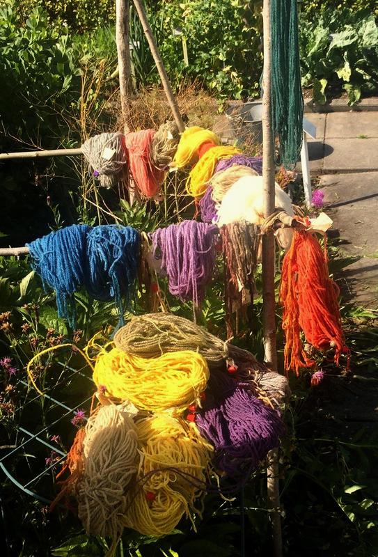 Garnbunter i mange forskjellige farger henger til tørk etter at de er blitt farget med ulike planter. (Foto/Photo)