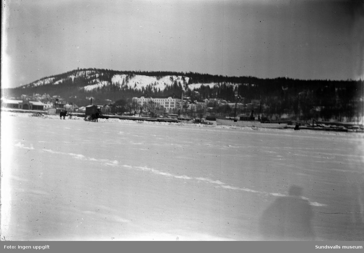 Vy från hamnen vintertid, hästar på isen, lasarettet i bakgrunden.