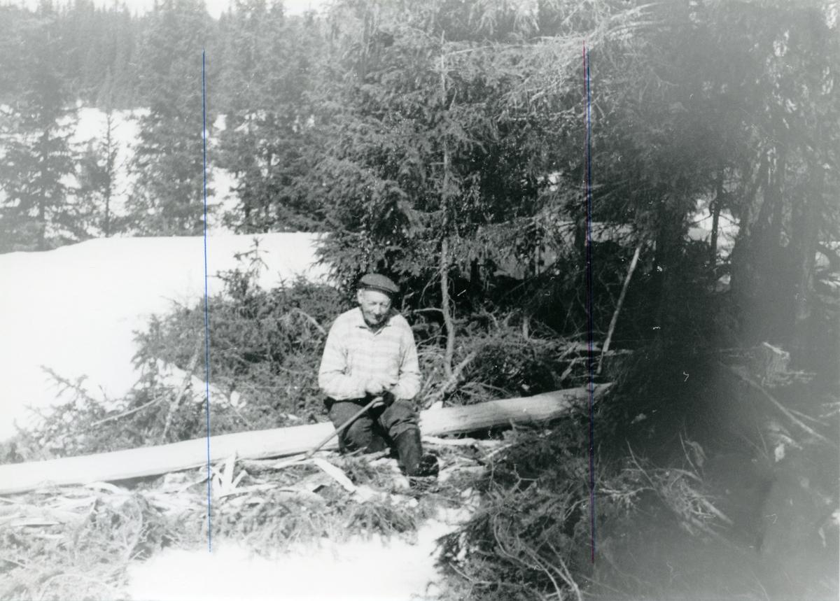 Sigurd Dokken.