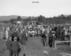 Fra dyrskue eller fesjå i Telemark i 1925.  Arrangementet bl