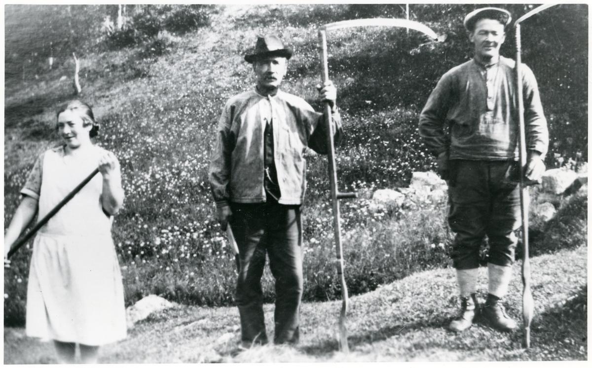 Slått på Hansebakke i 1929.