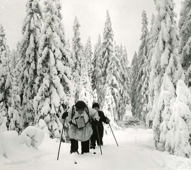 Hilding och Erik åker skidor i loppet Bollnäs runt på skidor.