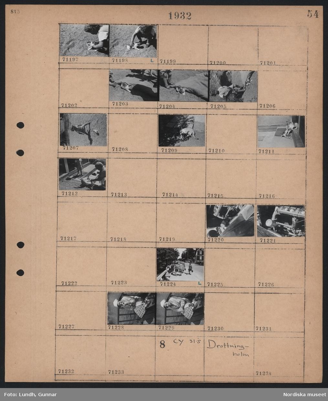 Motiv: (ingen anteckning) ; Ett barn leker med en kattunge, en bilmotor, en grupp barn går på en trottoar, en kvinna sitter på en brygga och äter.