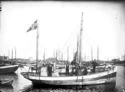 Fiskekutter Reg. D149
