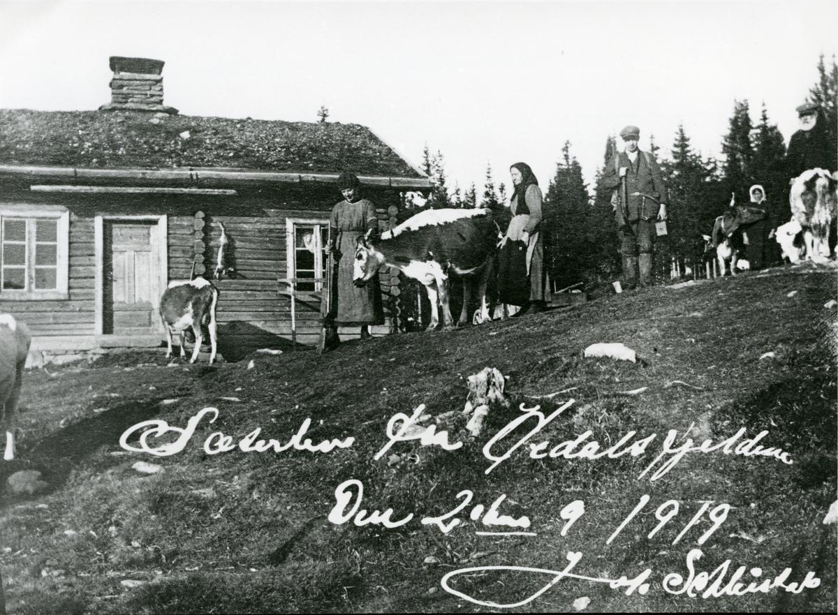 Seterliv, frå Søre Li-setra i Hedalen, 1919.