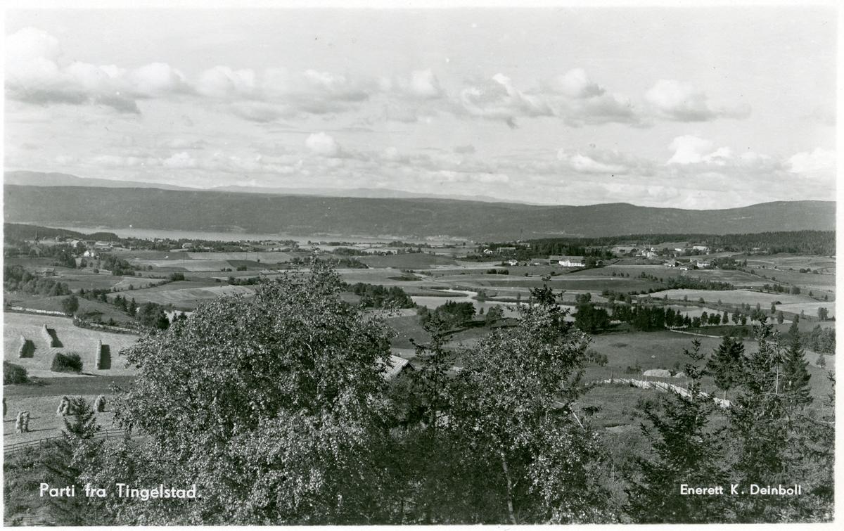 Postkort med motiv fra Tingelstad på Hadeland.