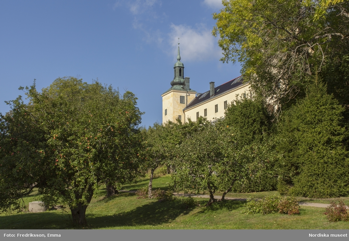 Tyresö slott, Nordiska museet, slott, gods, Tyresö, natur, äpple, höst, sol, byggnad, arkitektur