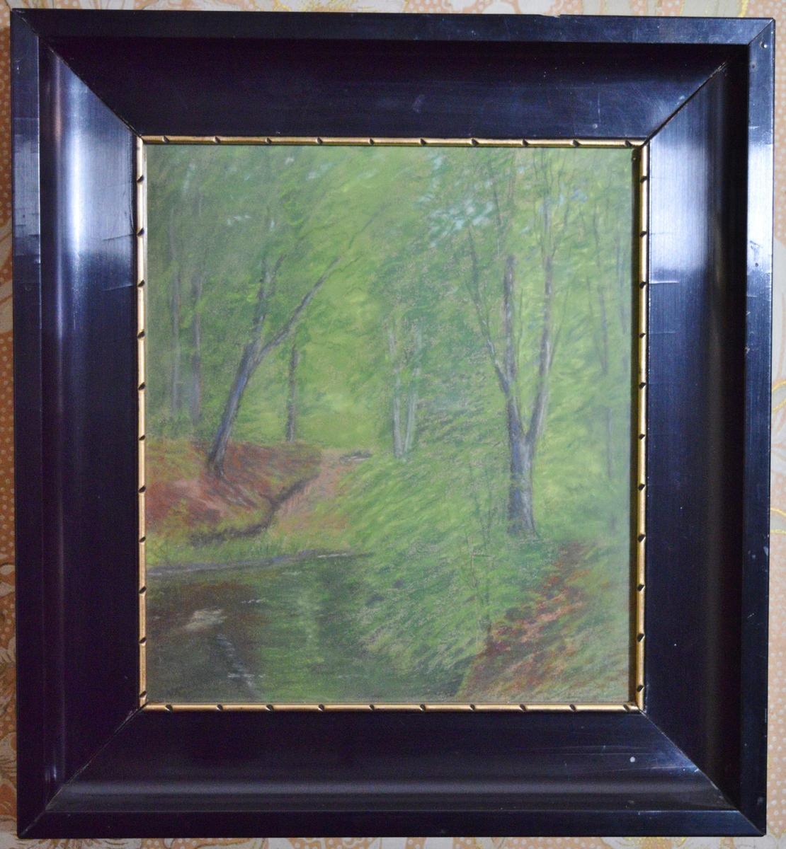 Tett skog med tjern i forgrunnen til venstre.