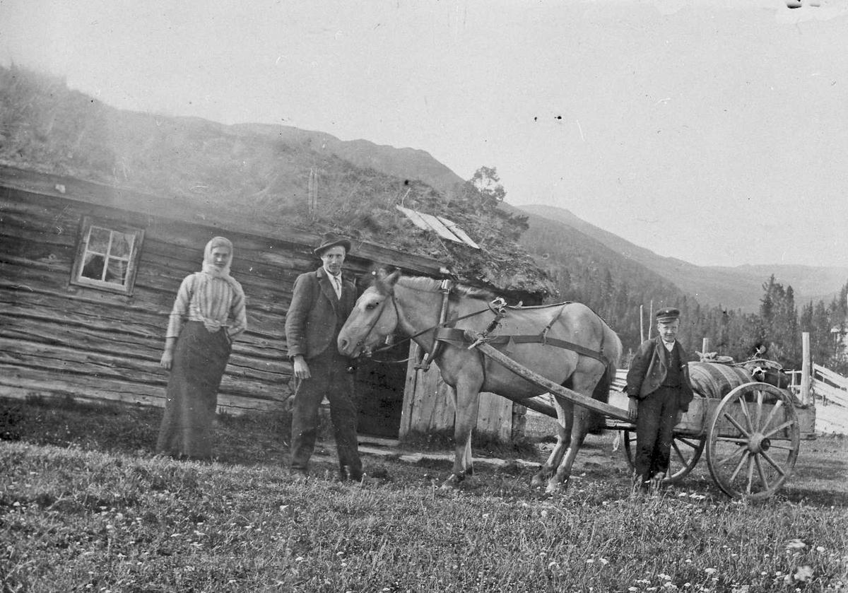 Hest, vogn, personer, klær, seterhus.