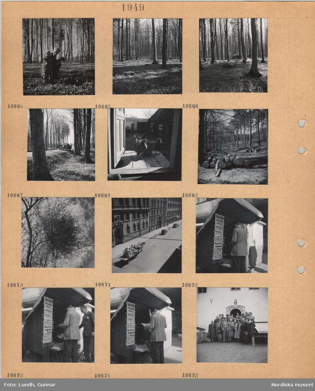 Motiv: Kvinna och litet barn plockar vitsippor, bokskog utan löv, vitsippor på marken, personbil på en väg genom bokskogen, två hönor på en förstukvist, gårdsplan, timmer ligger vid en väg i en barrskog, s k häxkvast i träd, hästdragen kärra med hantverksprodukter på stadsgata, löpsedlar för kvällstidningar med nyhet om Ingrid Bergman vid tidningskiosk, män köper tidningar, gruppbild av män, kvinnor och barn framför portal till äldre byggnad.