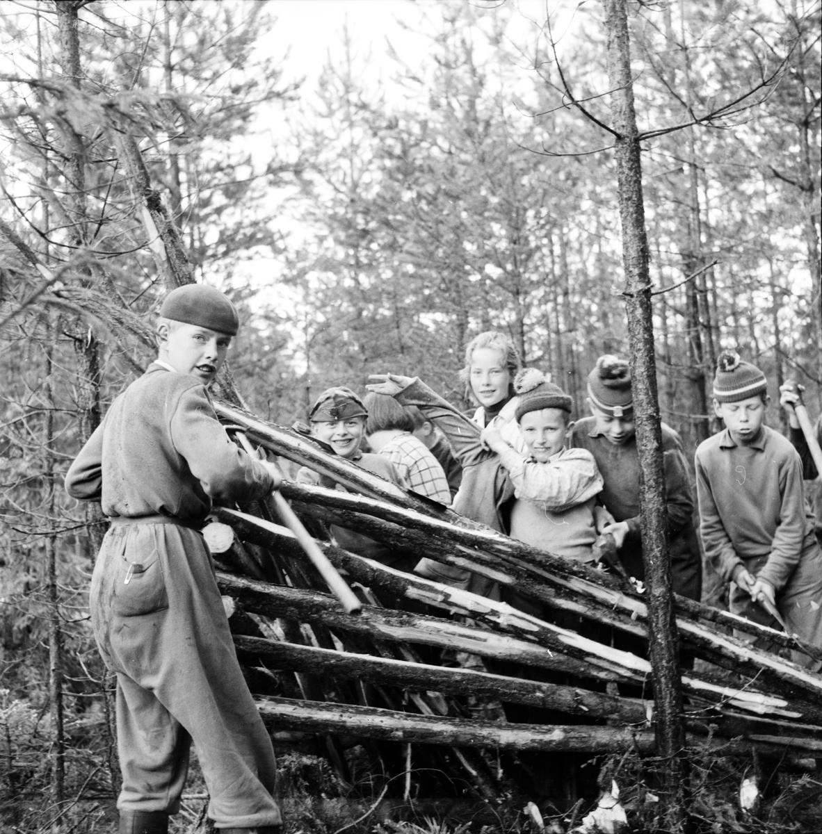 Växbo, Barn sköter skolskog, Juni 1956