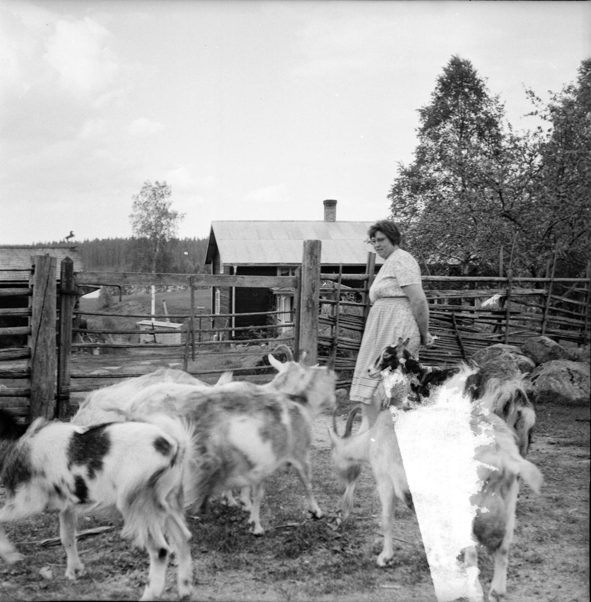 Flätsbo, Jonas Blom från USA, 9 Juni 1965