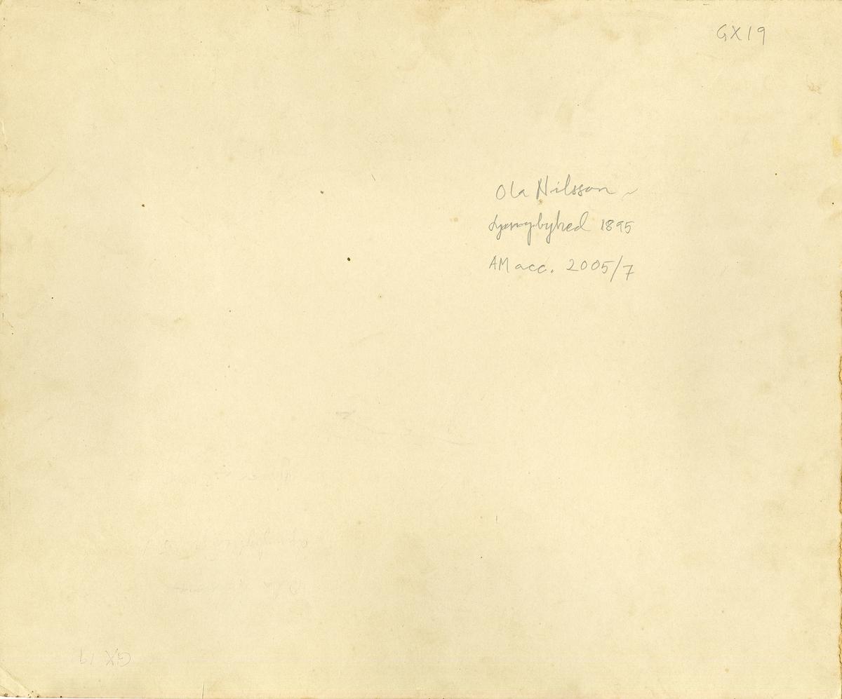 Skånska husarregmentet K 5 uppställt till häst på Ljungbyhed, 1865.
