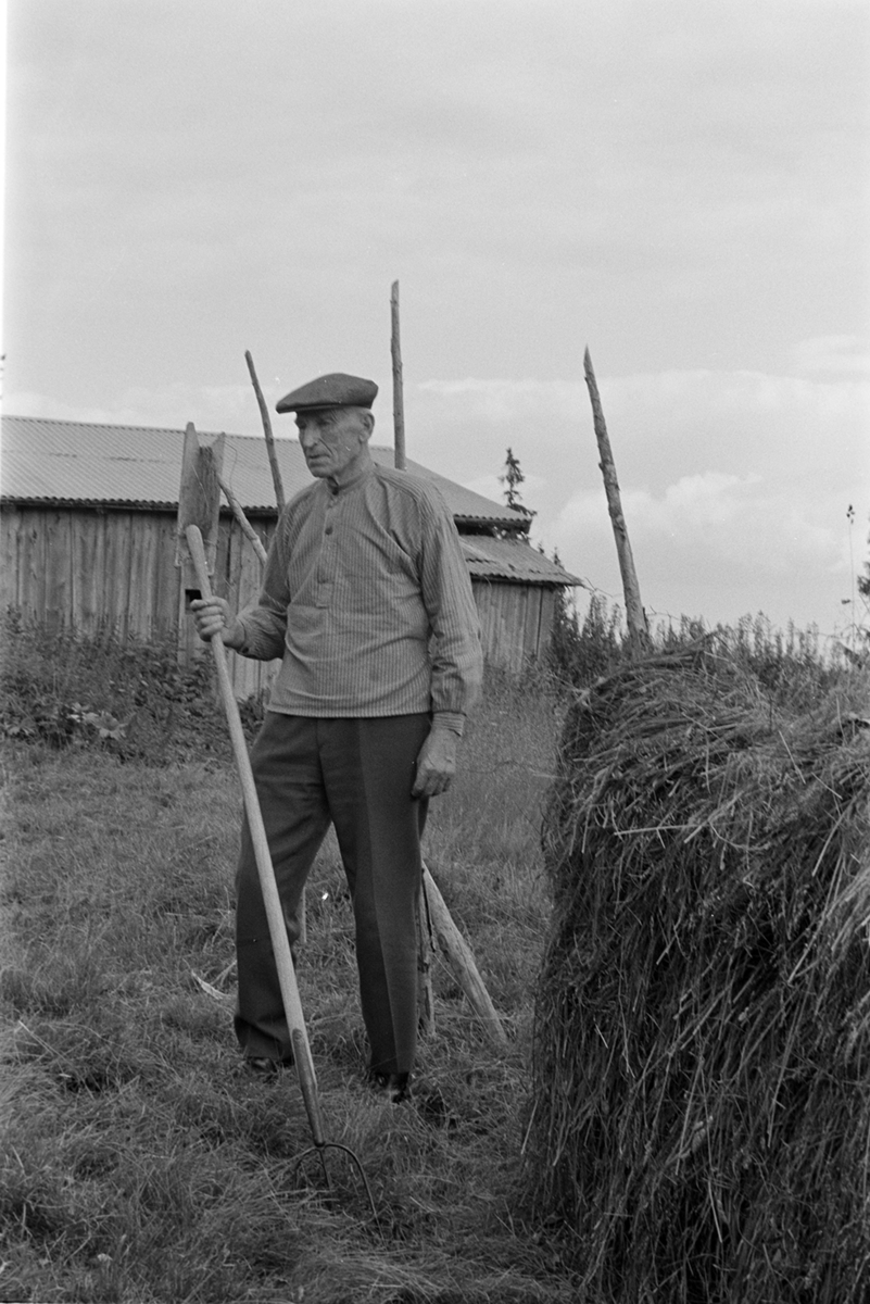 Lavlia, Syljeset, Vang allmenning, Kristoffer Syljeset, høygaffel, hesje, seterbruk på Hedmarken.