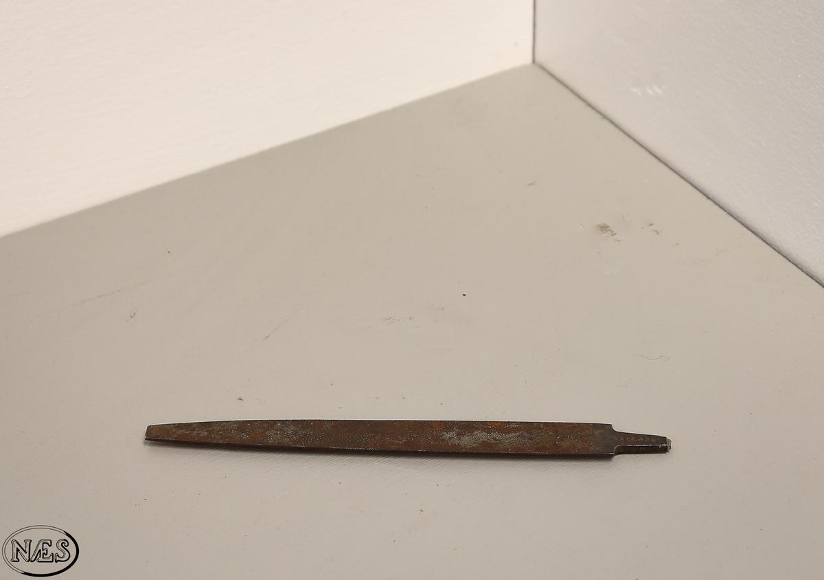 Trerasp med små knotter. Raspen har et halvrundt tverrsnitt. Raspen er uten skaft og har en avsmalende form. Tangen er delvis knekt av.