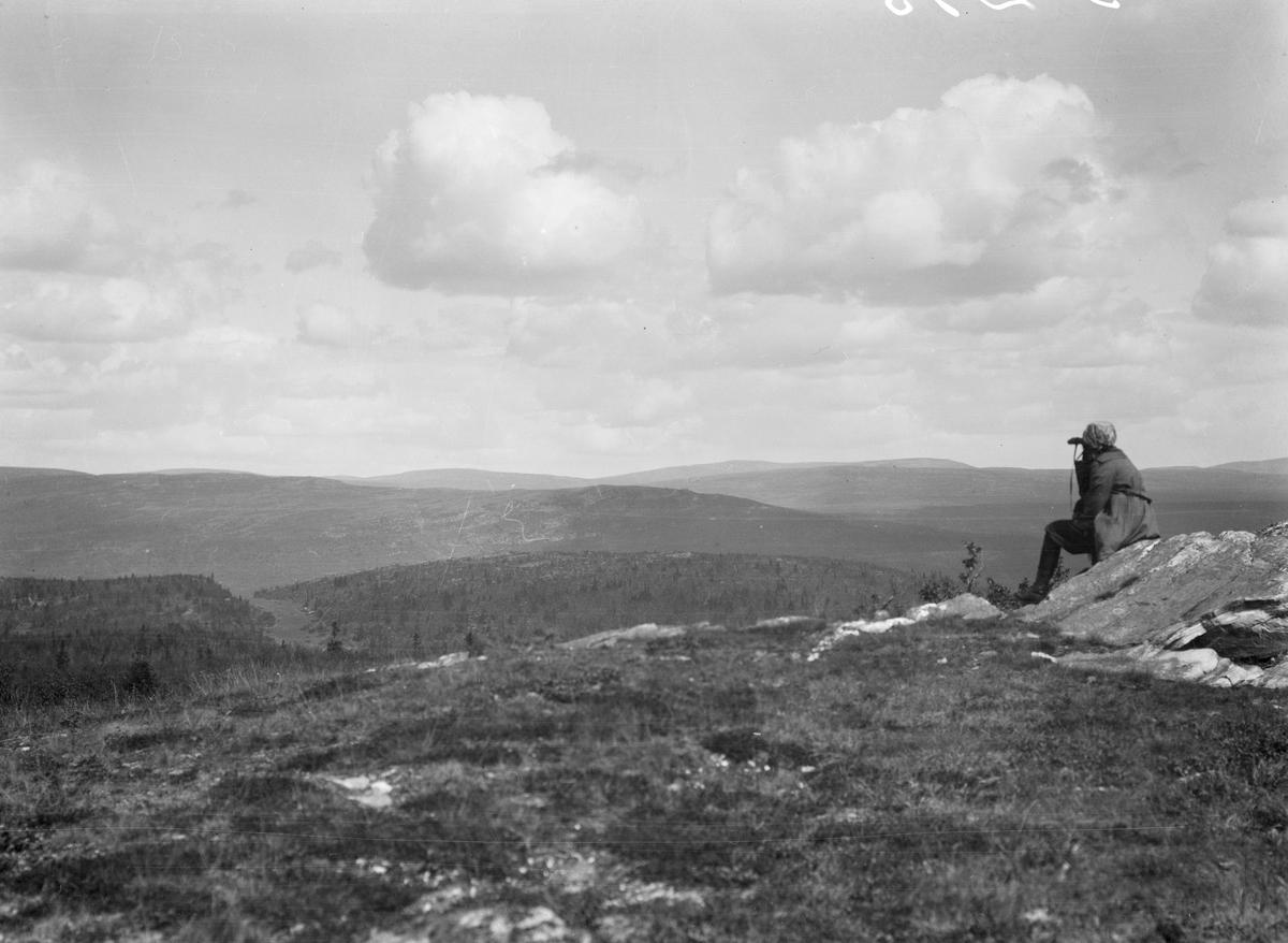 Ringebu. Klinkenberg et fjell på 1031 m. Utsikt mot Nyseterkampen.